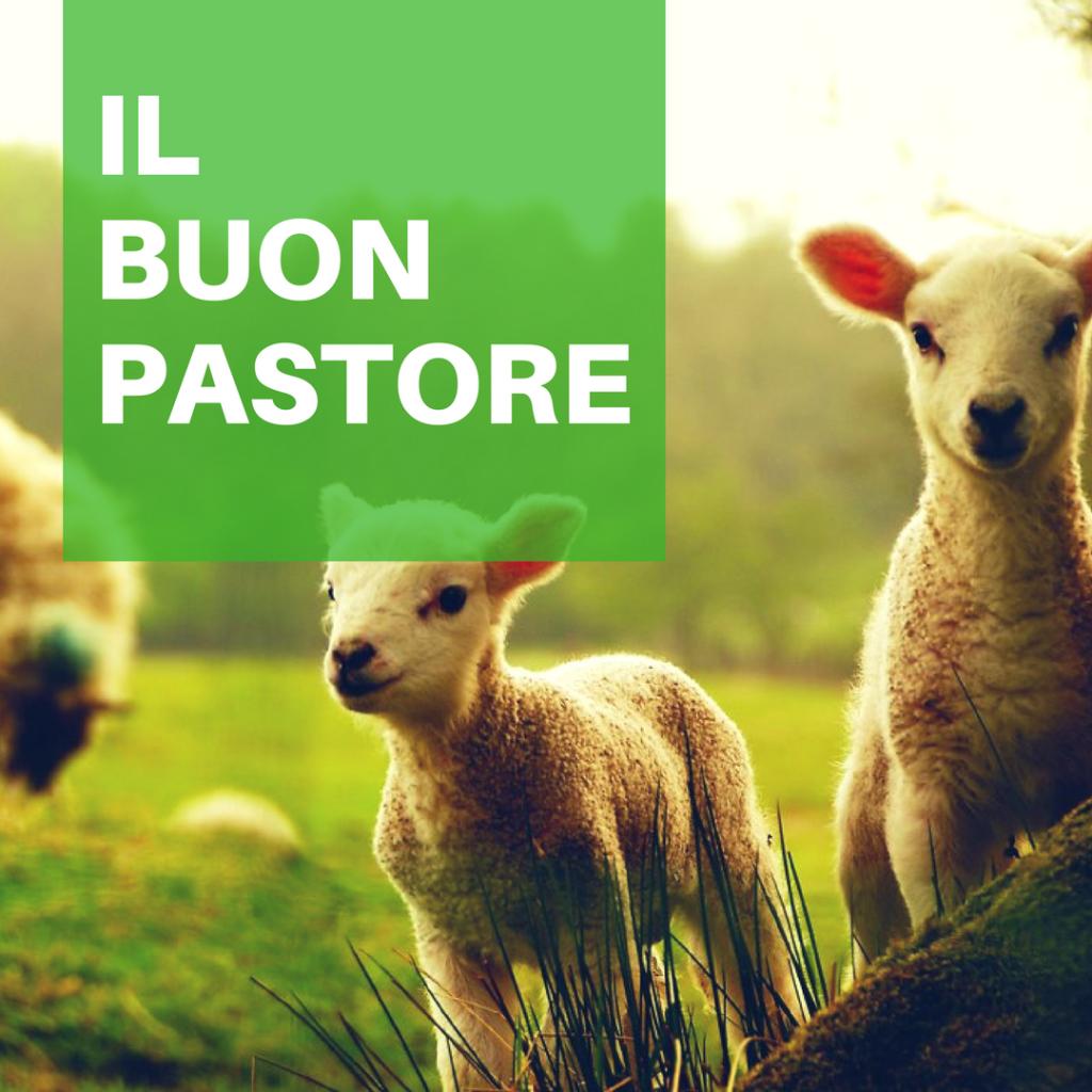 IV Domenica di Pasqua (Anno B)